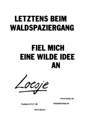LETZTENS BEIM WALDSPAZIERGANG / FIEL MICH EINE WILDE IDEE AN